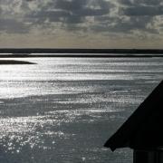 Gebogene Gabeln mit Schatten auf rotem Grund, Fotografie von Beate-Faller-Hagmann