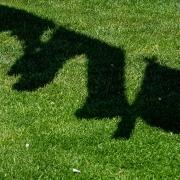 Schatten von Wäsche auf Wäscheleine, Fotografie von Felix Sieber