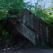 Polen - Wolfsschanze, Fotografie von Giesela Peters