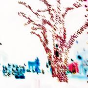 Vor einem weißen Hintergrund steht im Vordergrund ein stilisierter roter Baumstamm, im Mittelgrund sieht man einen stilisierten ganzen Baum, links stehen stilisiert Menschen in Blautönen im Hintergrund sieht man das Brandenburger Tor.