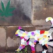 Vor einer Wand aus großen Hohlblocksteinen steht eine bunte Katze aus Pappmaché. Auf einem Hohlblockstein ist die grüne Krone eine Palme gemelt.r