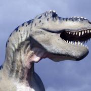 Auf dem querformatigen Bild ragt der Kopf eines Dinosauriers aus Pappmache in das Foto.