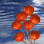 Vor einem blauen Himmel mit weißen Wolken sieht man eine Hand in der 7 Hokkaidokürbisse an Schnüren wie Luftballons in die Höhe gestreckt werden