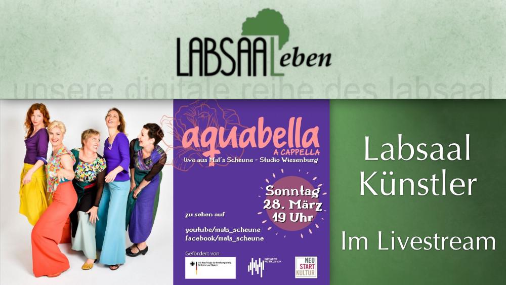 Livestream Plakat der Gruppe Aquabella